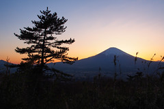P4190067-3 (vincentvds2) Tags: fuji fujisan mountfuji mtfuji ashigara sunset
