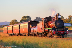 Sunset (Dylan B`) Tags: qr queensland rail southern downs steam railway warwick clifton toowoomba train c17 971 sunset afternoon sunny