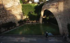 Parejita (candi...) Tags: arco balsa agua pareja chico chica hiedra castillo airelibre personas arquitectura urbana sonya77