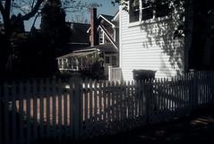 Fenced (David Stebbing) Tags: color flickr street