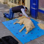 Sand Hound, Sculpted in Bath on Saturday Afternoon. thumbnail