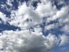 April 25, 2017 at 04:14PM (Mr T UK) Tags: ios photos cloud clouds sky outdoor blue white grey dark light sun sunshine cloudy clear overcast iphoneography mobile 365days 365day project365 cloud365