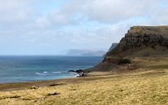 distant cliffs seen from latrabjarg (kexi) Tags: iceland europe cliffs distant water ocean blue atlanticocean view landscape paysage wild north nature canon may 2016 turquoise instantfave coast shore