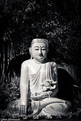 Buddha (Alan Yamassaki Rem) Tags: morning brazil portrait blackandwhite bw art beautiful beauty statue closeup wonderful temple close saopaulo retrato buddha sopaulo religion relaxing culture saturday buddhism pb sp greatshot meditation cultura zulai cotia buddhatemple magnific zulaitemple