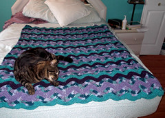 Suzy (The Crochet Crowd) Tags: ripple crochet mikey yarn blanket afghan april redheart chevron challenge freepattern 2013 freecrochetpattern thecrochetcrowd oceanoceanwavesafghan
