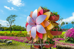 Harry_09970,,,,,,,,,,,,,, (HarryTaiwan) Tags: taiwan    d800                harryhuang   hgf78354ms35hinetnet