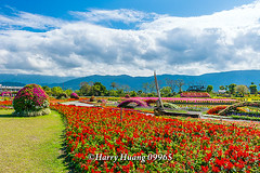 Harry_09965,,,,,,,,,,,,, (HarryTaiwan) Tags: taiwan    d800               harryhuang   hgf78354ms35hinetnet