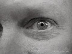 pentaxauto110 scannednegatives eyecloseup lightroom3 epsonscannerv500 lomographyorcabw110film pentax11012824mmlens ilfoteclc296mins pentaxcloseuplenss16255mm