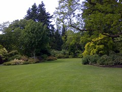 Great Lawn, wedding area (VanDusen Botanical Garden Official Photostream) Tags: weddings greatlawn vandusengarden vandusenbotanicalgarden gardenweddings weddingsinvancouver