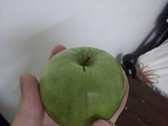 IMG_20130609_003701 (Ahmed AlHallak) Tags: green apple stem half sliced stalk