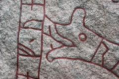 Närbild av Runsten (auzgos) Tags: closeup sten runa runsten närbild sommarfoto runskrift sf130623 runriket