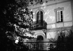night scene (deFe.) Tags: windows light shadow blackandwhite building window leaves foglie 35mm 50mm blackwhite shadows ombra edificio ombre finestra bologna 17 albero arbre ilford yashica luce feuilles finestre p4 fxd yashicafxd ilfordp4