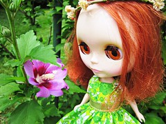 """""""Look At This Cool Flower I Found!"""""""