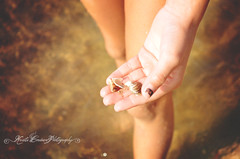 (Krista Cordova Photography) Tags: shells lake beach water girl seashells sand hand lakemichigan littlegirl