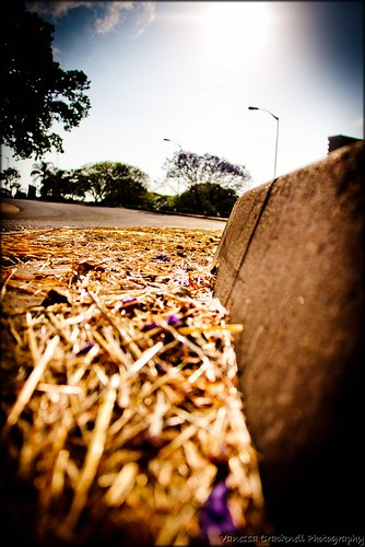 Worldwide Photo Walk 2013 - Pinetown
