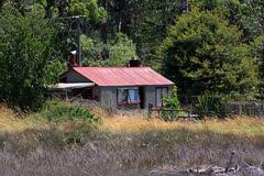 The cottage at the edge (duncanmc42) Tags: newzealand house reeds cottage southisland cottages abeltasmannationalpark marahau tidalflats