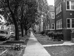 "North Side Street Chicago • <a style=""font-size:0.8em;"" href=""http://www.flickr.com/photos/59137086@N08/11428657504/"" target=""_blank"">View on Flickr</a>"