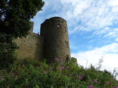 Ludlow Castle (Fleety Vision) Tags: castle english heritage history countryside shropshire ludlow monuments