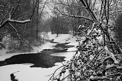 Frozen River (RichKD) Tags: park winter light shadow bw white storm black tree ice canon river dark frozen woods eater baw