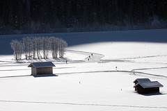 Morgensport (mikiitaly) Tags: italy elements altoadige langlauf wipptal loipe pfitschtal dtirol