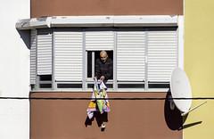 'Dish Towel' (Canadapt) Tags: man portugal window lisbon dry wash blinds hangout satellitedish loures canadapt