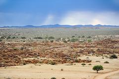 Steppe im Süden Namibias