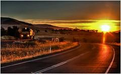 Trains In Tasmania - 2011 Right on Sunset Near Tea Tree (Trains In Tasmania) Tags: sunset sun backlight train gm australia tasmania backlit dq backlighting freight
