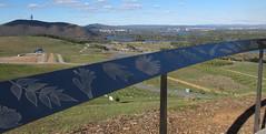 Engraving with views to the lake BG (spelio) Tags: good australia arboretum april canberra act cbr 2013