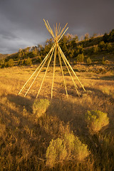 Tipi_poles_sunset