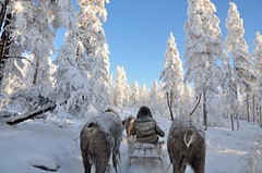 Полюс холода, Якутия