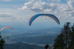2014.08.30-DSC_1504 (Speierling93) Tags: gleitschirmfliegen kandel landschaft schwarzwald startplatz waldkirch