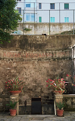 cat napping (doggle) Tags: canoneos500n kodakportra160 film 35mm italy sorrento roman cat blackcat aquaeromanumopus