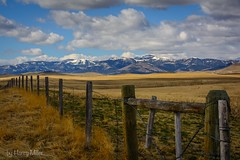 Along Montana Highway 200... (HarryMiller002) Tags: montana mountains snow fence ranch rural bigsky clouds outdoors