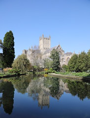 Wells Cathedral (Mukumbura) Tags: wellscathedral bishopspalace gardens pool well spring wells somerset england britain unitedkingdom uk church cathedral trees blue sky clear weather reflections beauty religion architecture buildings water moat lake tranquility peacefulscene peace quiet magnificent grandeur