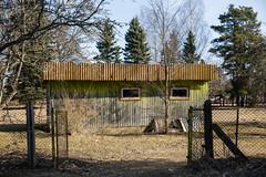 EH2A7609 (Pat Meagher) Tags: suurejaani eesti estonia estonians
