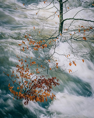 River Brathay (colinbell.photography) Tags: