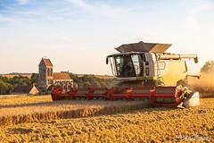 CLAAS Lexion 770 V1050 (Mat Bonaventure) Tags: chuch wheat harvest combine harvester france picardie claas lexion john deere fendt