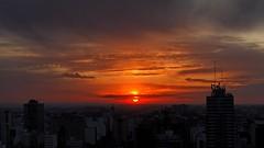IMG_1888 City's sunset (Rodolfo Frino) Tags: cityscape sunset atardecer sol sun yellow glod golden buildings clouds contrast dusk crepusculo anochecer urban antena antenas goldenhour skyline cielo