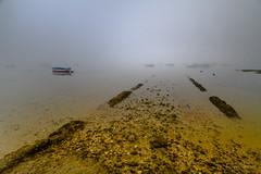 Entre la niebla (AvideCai) Tags: avidecai paisaje agua niebla sigma1020 cádiz largaexposición