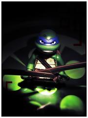 LEO (LegoKlyph) Tags: lego minifigure turtles cartoon ninja teenage mutant blue tmnt leo eastman 80s swords