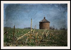 clay tile crib (David Sebben) Tags: clay tile corn crib iowa cornfield abandoned farm architecture