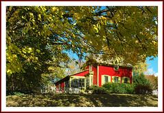 The Perfect House for Autumn (sjb4photos) Tags: michigan ypsilanti washtenawcounty autumn redhouse house