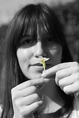 139/365 b&w (yanakv) Tags: yo yanitophotography blancoynegro blackandwhite flor flower spring 50mmf18stm 50mm 365days 365dias canon eos1200d