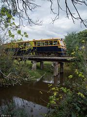 Watts River (Dobpics O'Brien) Tags: walker diesel rail railway railways 22rm watts river train railcar victorian victoria vr bridge healesville yarra valley