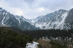 View of the High Tatras near Popradské Pleso (Timon91) Tags: slovakia slowakije slowakei slovenskárepublika slovensko spoor spoorweg spoorwegen mountain mountains bergen berg gora hore tatra vysoke tatry high hoge