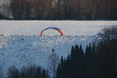 The paraglider (dididumm) Tags: winter snow paragliding paraglider sunshine sonnenschein schnee gleitschirmfliegen gleitschirmflieger