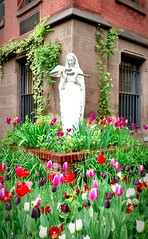 Be Blessed (Majka Kmecova) Tags: blessed bless nature tulips flowers building stmaria statue photo spring motorolaxt1023 mobilephoto