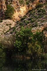 En la Presa de Azud. / At Azud Barrage. (Liétor, Albacete, Spain) (Recesvintus) Tags: presadeazud azud dam barrage albacete castillalamancha spain recesvintus landscape paisaje reflections reflejos agua water mundo river outdoor light luz liétor españa río