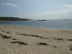 18 April 2017 Scilly (27) (togetherthroughlife) Tags: 2017 april scilly islesofscilly