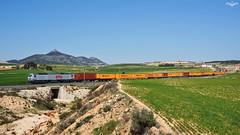 TECO LCR por La Encina (lagunadani) Tags: paisaje 333 3333 prima rosco lcr lowcostrail teco mercancias contenedores laencina alicante renfe diesel ferrocarril tren locomotora sonya7